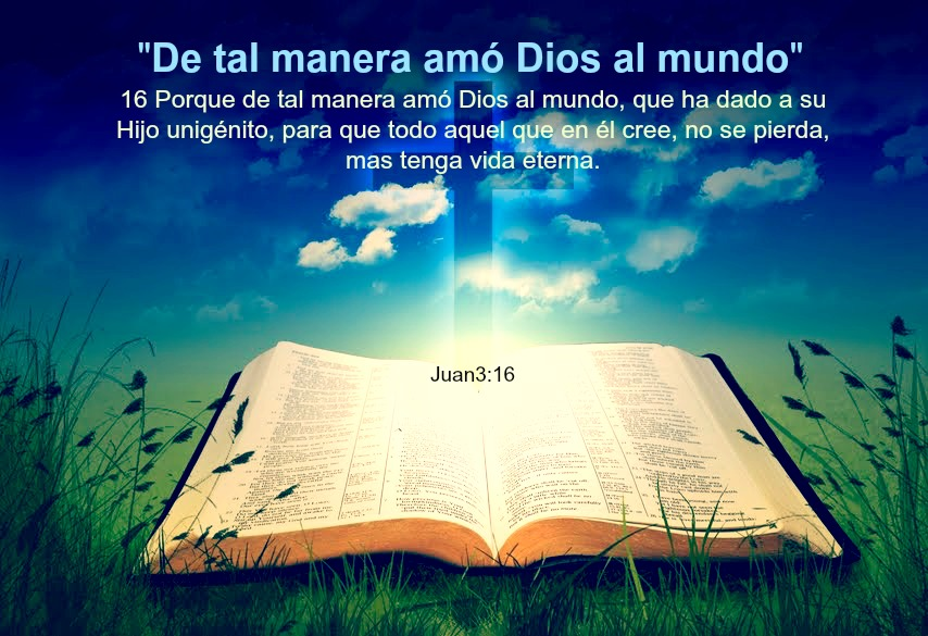 Matrimonio Cristiano Biblia : Matrimonio biblia nuevo testamento la libros de